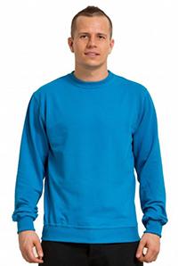 Sweatshirt летний из френч терри