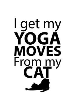 Толстовка, свитшот, футболка I got my yoga moves from my cat