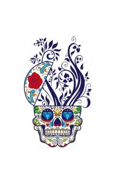 Толстовка, свитшот, футболка c Цветным черепом