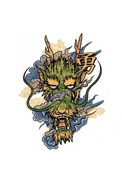 Толстовка, свитшот, футболка Китайский Дракон