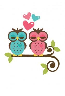 Cвитшот «Две совушки», Толстовка «Две совушки», футболка «Две совушки»