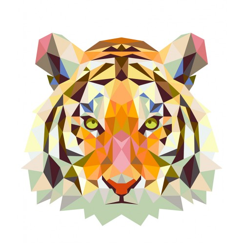 Толстовка с тигром, свитшот с тигром, футболка с тигром
